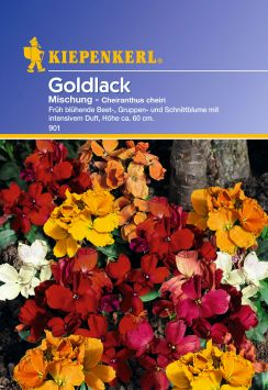 'Goldlack' Mischung