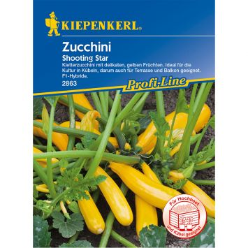 Zucchini 'Shooting Star' F1