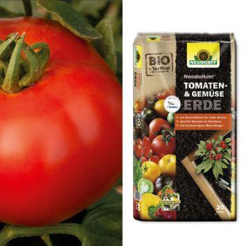 Sparangebot: 2 x 'Rondo Red' F1 - Salat-Tomate + 1 x NeudoHum® Tomaten- und Gemüseerde, 20 Liter