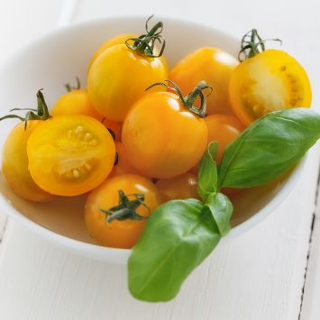 Nektar-Tomate 'Solena®' Yellow F1