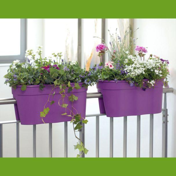 Flowerclip XL, 2er Set, lila