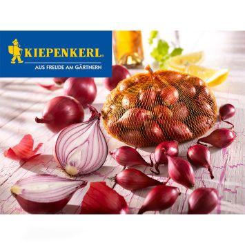 Rote Steckzwiebeln, 250 g