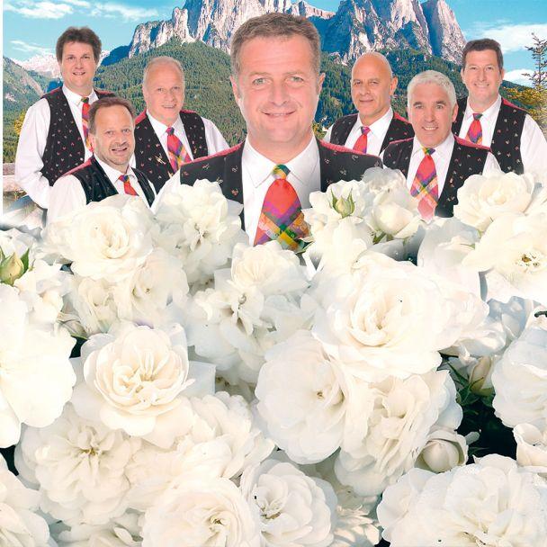 'Die Kastelruther Spatzen®' Rose, Container