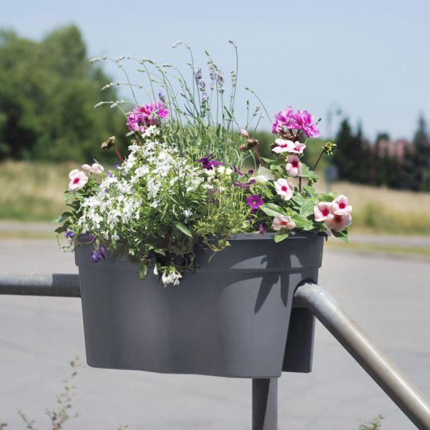 Flowerclip XL, 2er Set, anthrazit