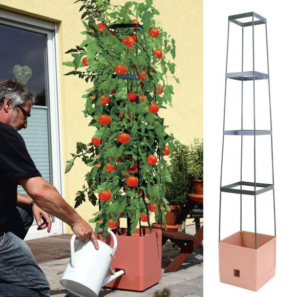 Pflanzenturm 'MaxiTom', terracotta