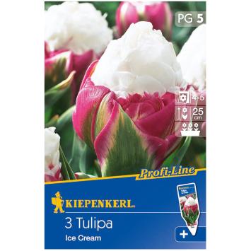 Gefüllte späte Tulpen Ice Cream