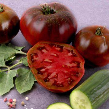 Gourmet-Tomate 'Schwarze Krim'