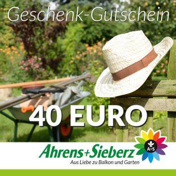 Geschenk-Gutschein, Wert 40 Euro Hut