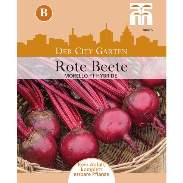 Rote Beete Morello