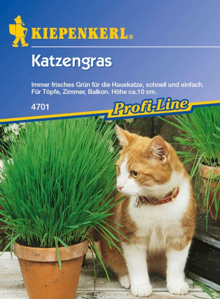 Kleintiermischung 'Katzengras'