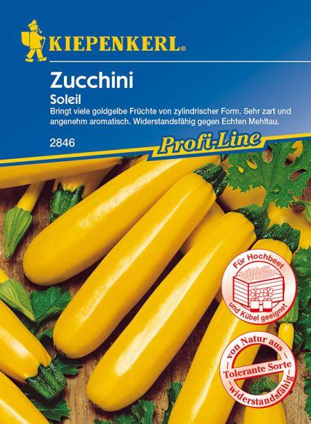 Zucchini 'Soleil, gelb'