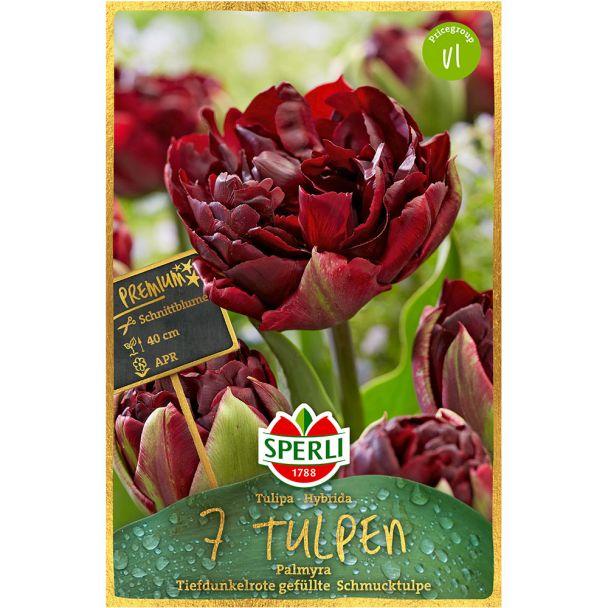Sperli Premium Tulipa Palmyra