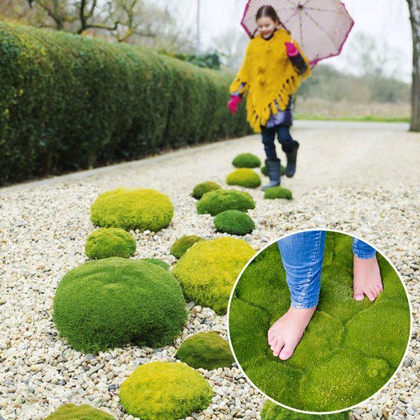 Match Moss 'Forest Green®'