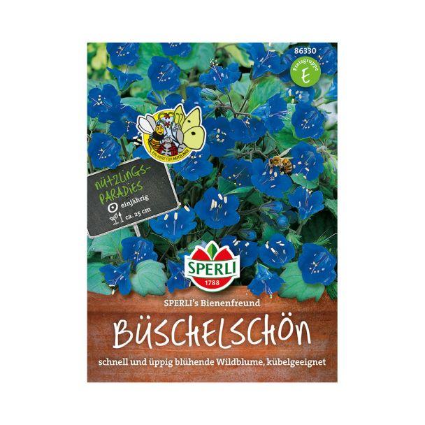 Glockenblütiges Büschelschön 'SPERLI's Bienenfreund'