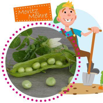 Zuckerschoten Grüne Perlen