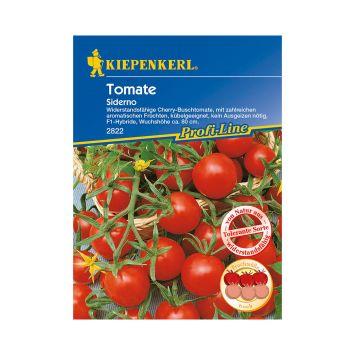 Cherry-Busch-Tomate `Siderno' F1