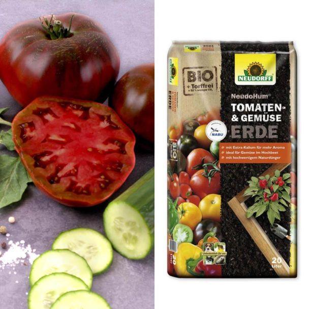 Salat-Tomaten 'Schwarze Krim' + Erde (Sparangebot)
