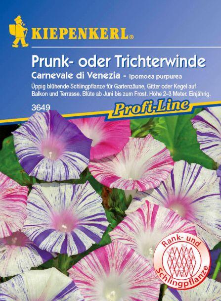 Prunk- oder Trichterwinde 'Carneval di Venezia'