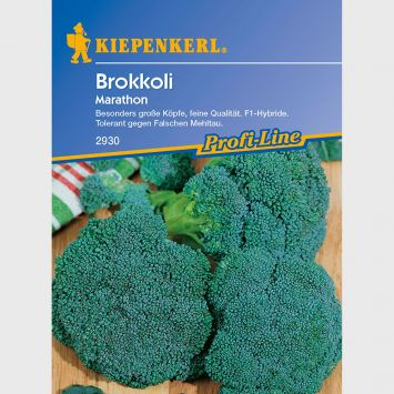 Broccoli 'Marathon' - F1