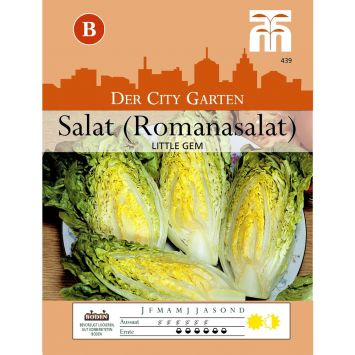 Salat (Romanasalat) Little Gem