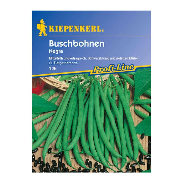 Buschbohnen 'Negra'