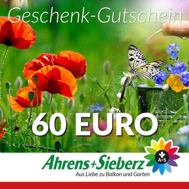 Geschenk-Gutschein, Wert 60 Euro Sommerfreude
