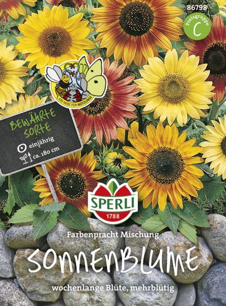 Sonnenblume 'Farbenpracht Mischung'