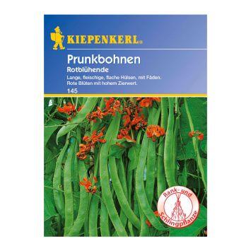 Prunkbohnen 'Rotblühende'