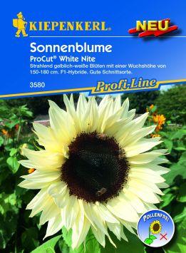 Sonnenblume ProCut® White Nite, F1-Hybride