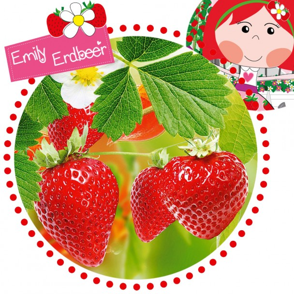 Balkon-Erdbeere 'Emily Ampel' by Emily Erdbeer