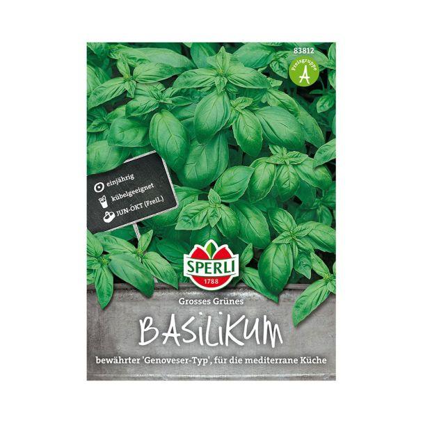 Basilikum 'Großes Grünes'