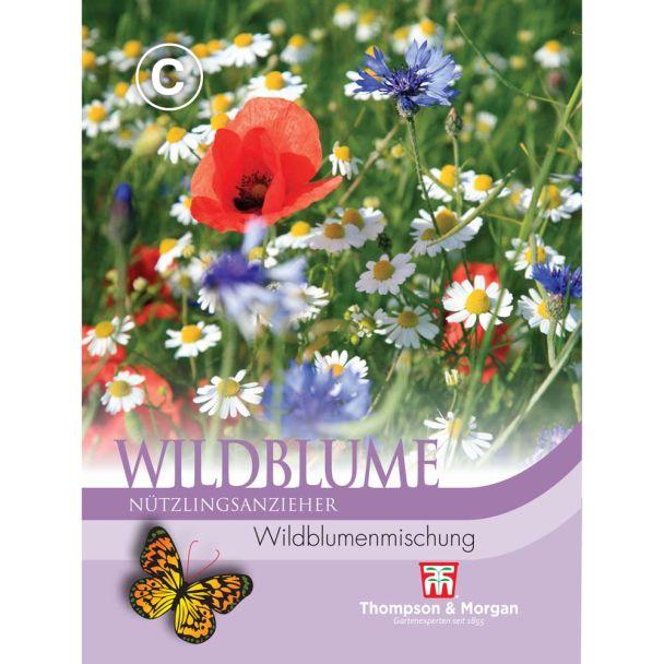 Wildblume Wildblumenmischung