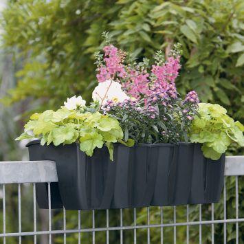 Crown Geländer-Blumenkasten, anthrazit