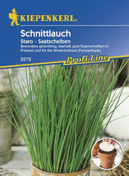 Schnittlauch 'Staro' (Saatscheiben)