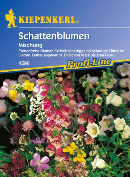 Schattenblumen 'Mischung'