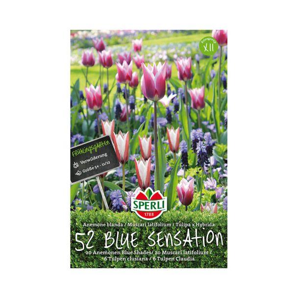 Frühlingsgarten Blue Sensation - Mischung