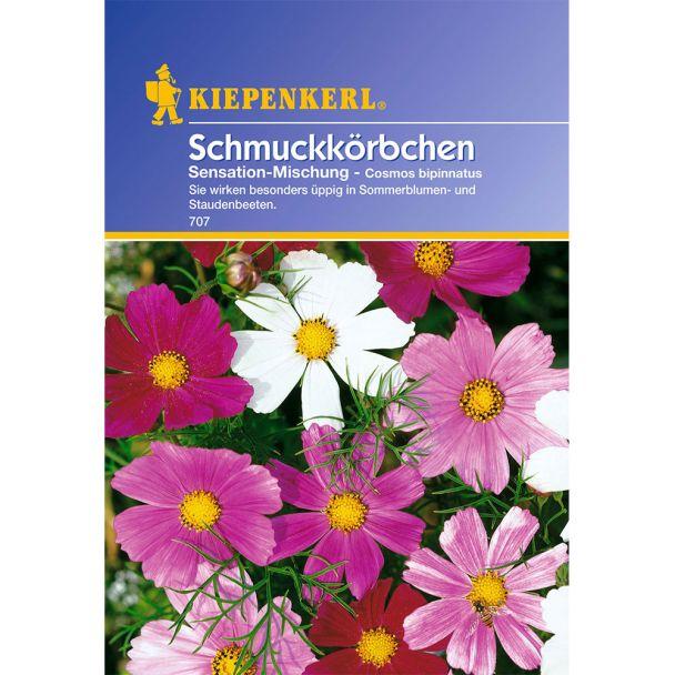 Schmuckkörbchen 'Sensation-Mischung'
