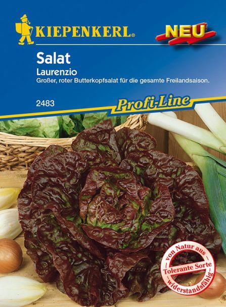 Salat 'Laurenzio'