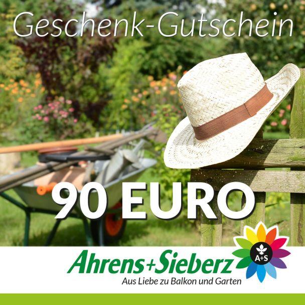 Geschenk-Gutschein, Wert 90 Euro Hut