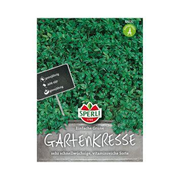 Gartenkresse 'Einfache Grüne'