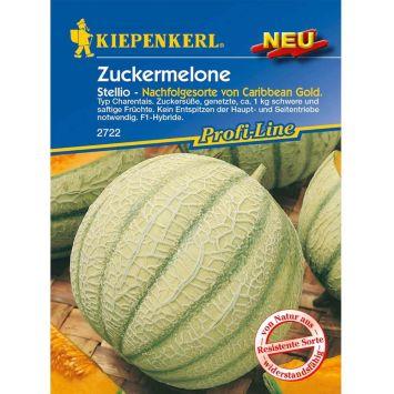 Zuckermelone 'Stellio F1'