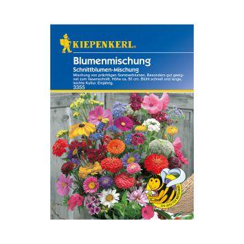 Bunte Blumenmischung 'Schnittblumenmischung'