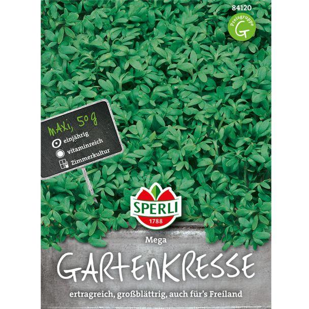 Sperli Gartenkresse 'Mega' Großblättrig - 50 g