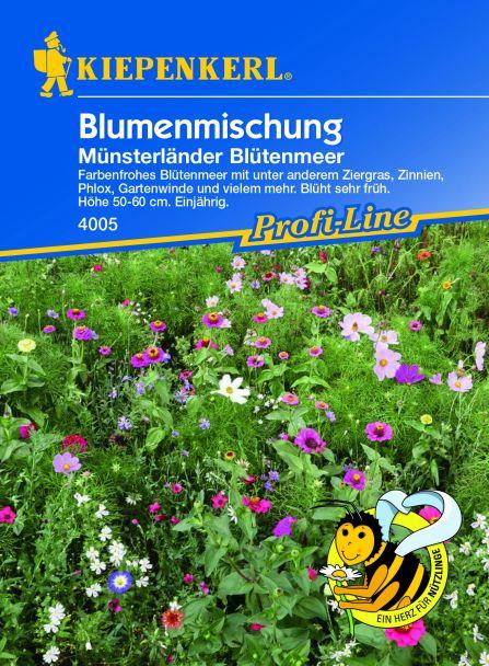 Blumenmischung 'Münsterländer Blütenmeer'