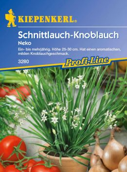 Schnittlauch-Knoblauch 'Neko'