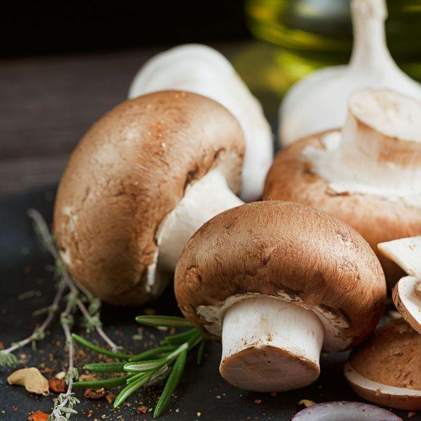 'Stein-Champignon' Pilz-Fertigkultur