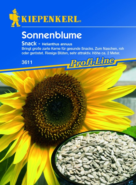 Sonnenblume 'Snack'