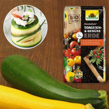 Set-Preis: 2x Culinari-Green F1 – Grüne Zucchini + 1 x NeudoHum® Tomaten- und Gemüseerde, 20 Liter
