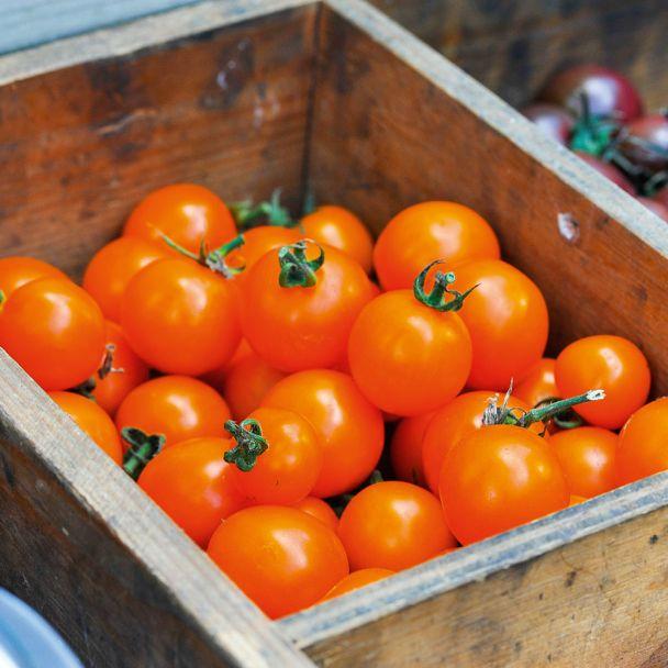 Nektar-Tomate 'Solena®' Orange F1