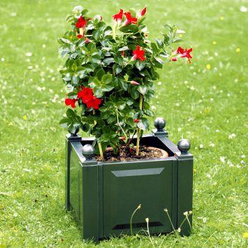 Pflanzkasten quadratisch mit Bewässerungssystem in Grün